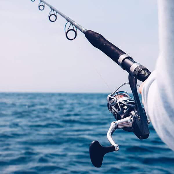 Dandelion Villas Paxos Experience Fishing